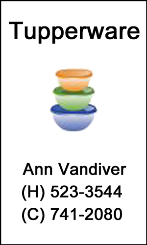 2016 Holiday Party Sponsor - Ann Vandiver, Tupperware